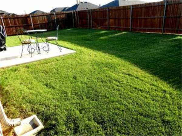 Sold Property | 717 Lark Drive Aubrey, Texas 76227 22